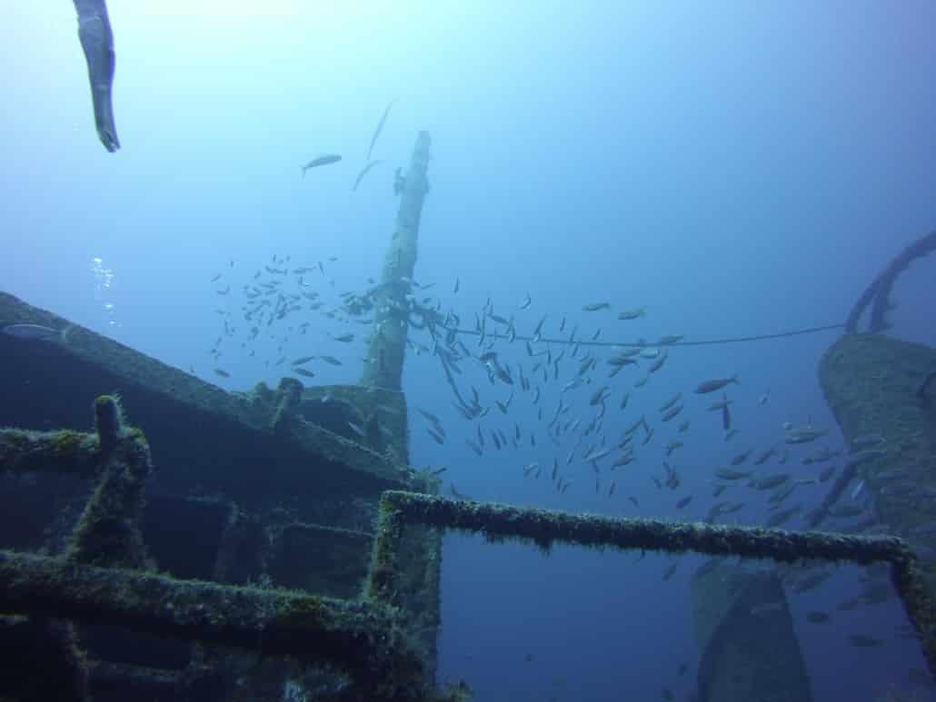 inmersión con Pecio, Tabaiba